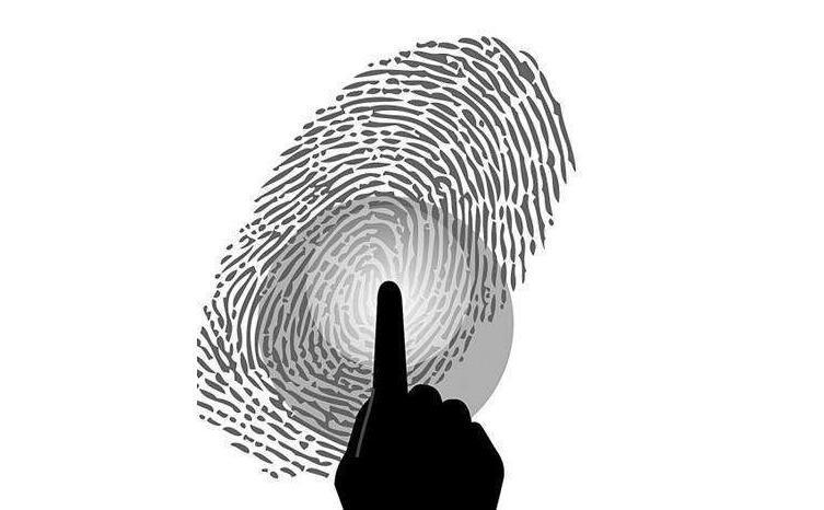 指纹识别最终的发展方向是什么?