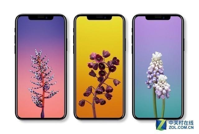 LGD将为苹果供应OLED屏幕?